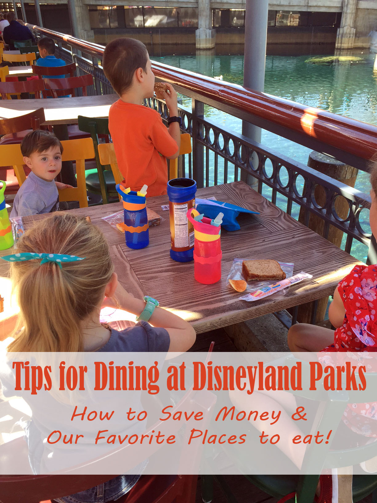 Disneyland Dining Tips